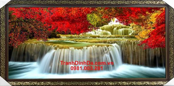 Thien Nhien Ky Vy Y8098