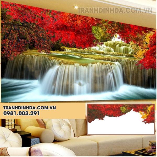 Thien Nhien Ky Vy Y80981
