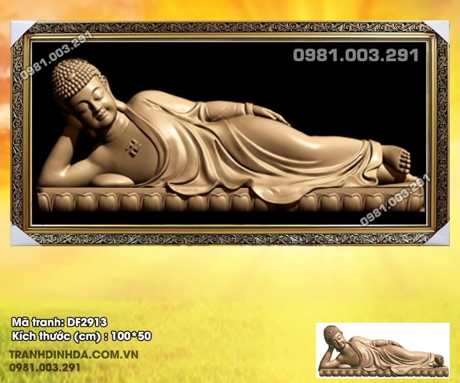 Tranh-Dinh-Da-Phat-Nam-Df2913